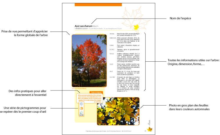 Livre Arbres Et Arbustes Pepinieres Botaniques De La Preille